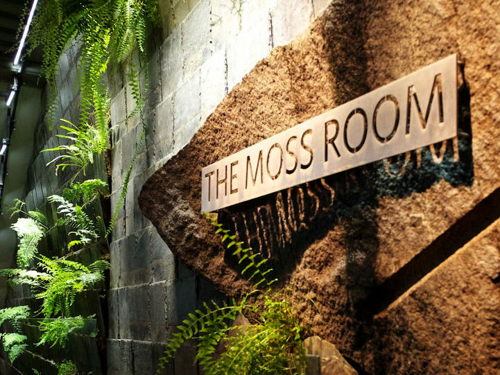 Moss Room, The photo