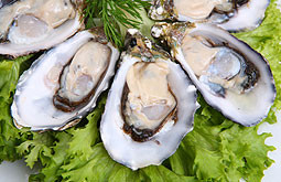 DeMun Oyster Bar photo