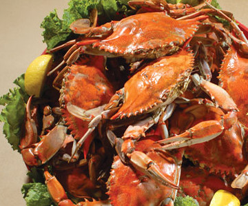 LocalEats Old Mill Crab House in Delmar restaurant pic