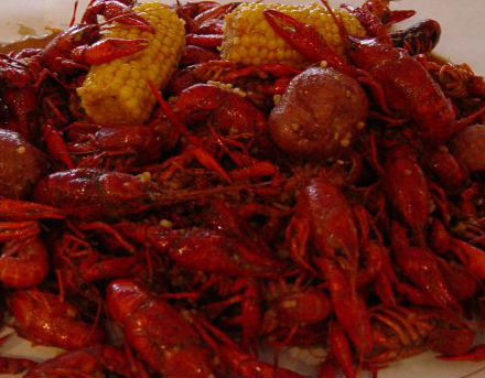 Crawfish & Noodles photo