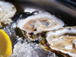 LocalEats Oyster Bar at Palace Station, The in Las Vegas restaurant pic