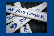 LocalEats Blue Ginger in Boston restaurant pic
