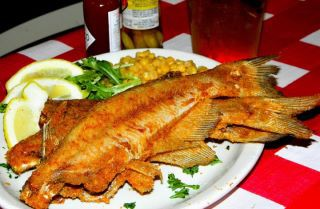 Catfish Deweys Pompano Beach