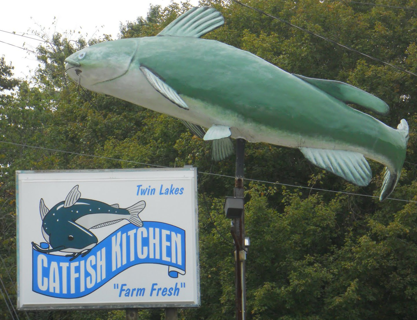 Catfish Kitchen photo