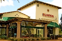 Lucca Cafe photo