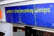Where The Monkey Sleeps photo